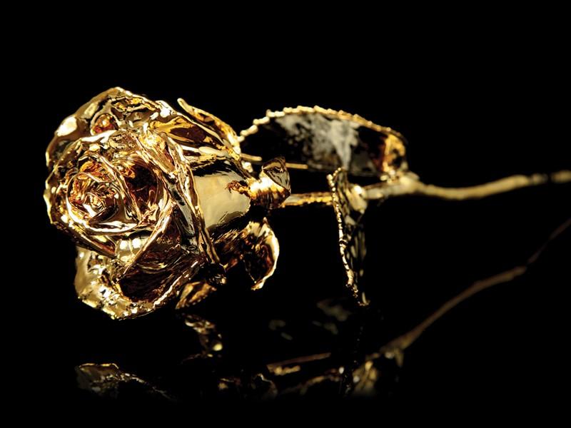 gold plating dragons den new orleans