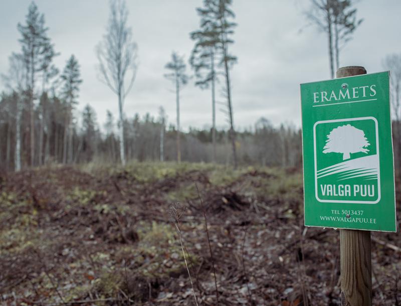 Image of area graanul invest Valga Puu