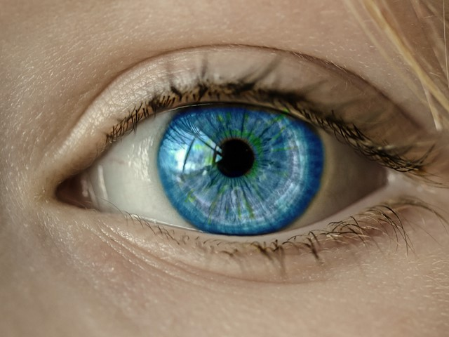 79fa67c90d0 Colour-changing contact lens shows distribution of eye drugs