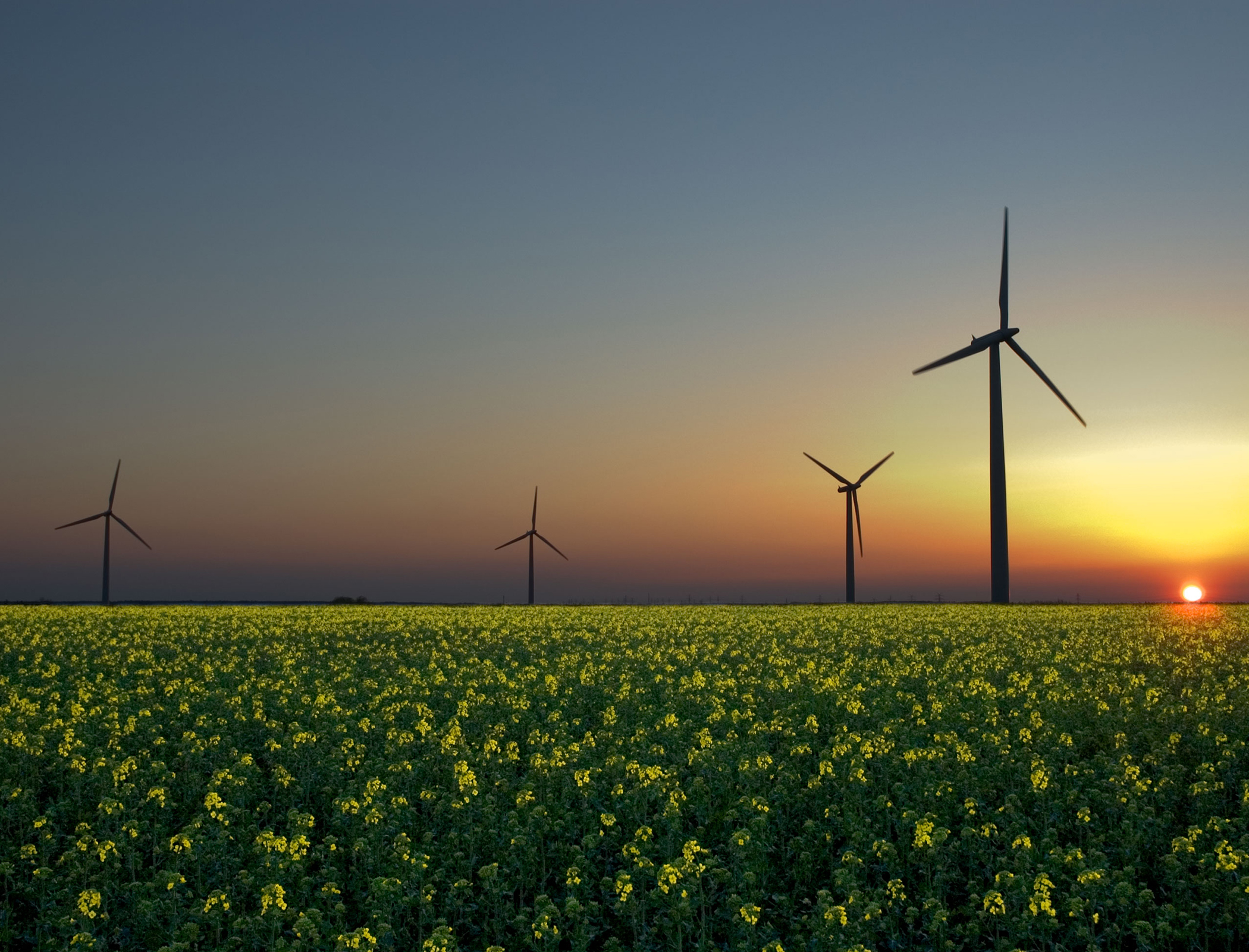 EU already reaping environmental benefits from renewables shift