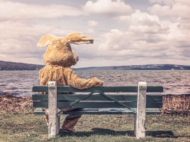 Person in rabbit suit sitting on a bench