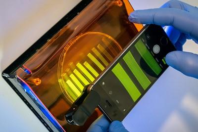 Hasil gambar untuk biodegradable microsensor for food